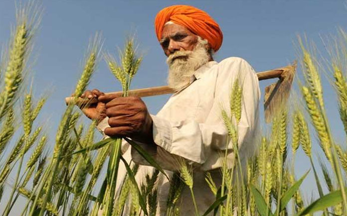 Backdrop of Indian Agriculture