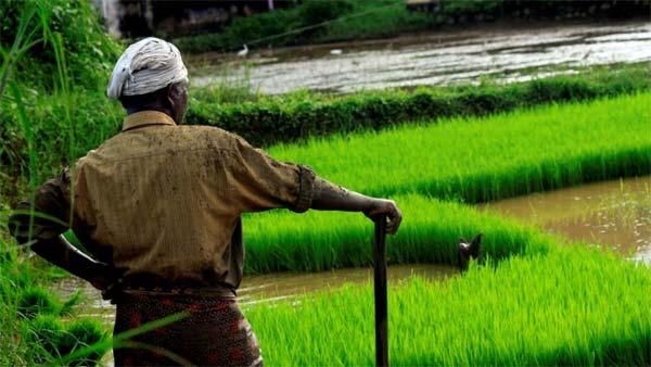 Farewell to Welfare of Farmers & Most Obedient to Market Forces